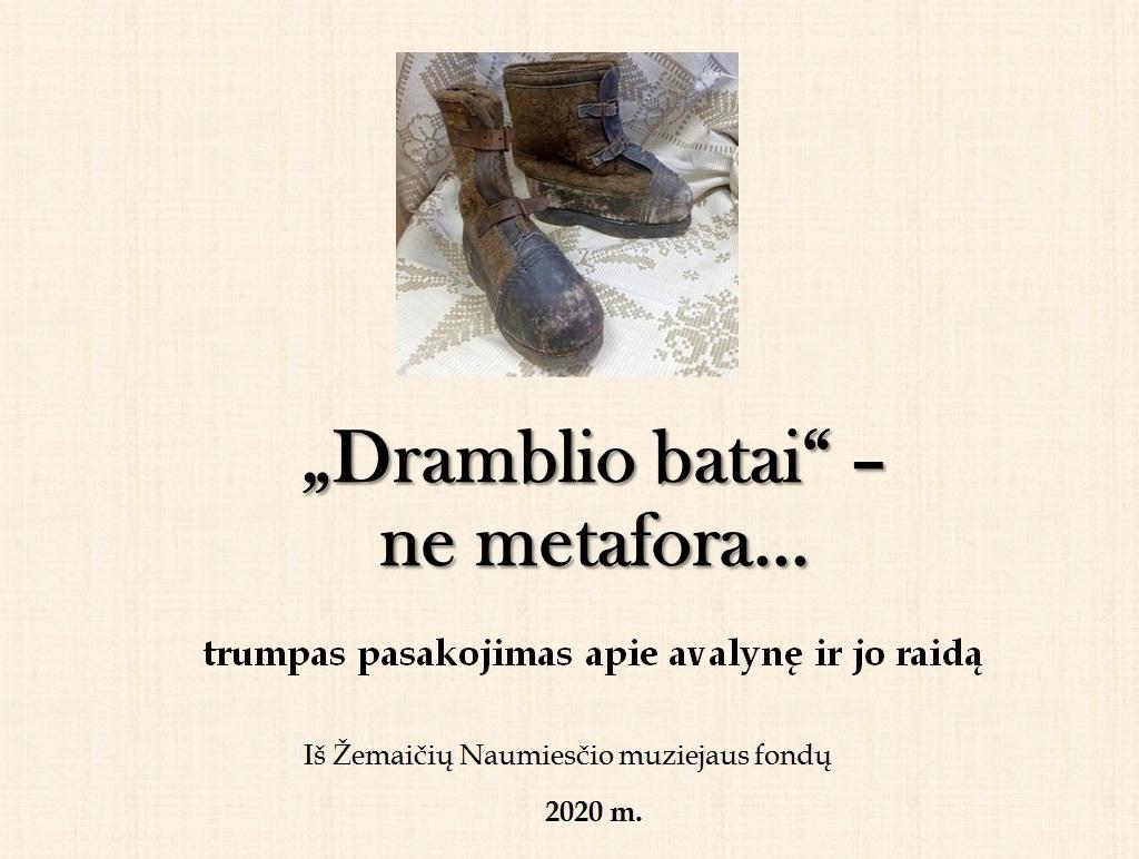 "Virtuali paroda """"Dramblio batai"" – ne metafora…"""